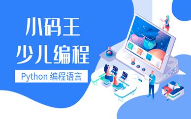 南京新街口小码王Python少儿编程一节课多少钱?