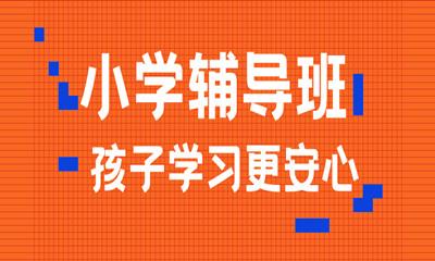 郑州金水励学小学一对一辅导
