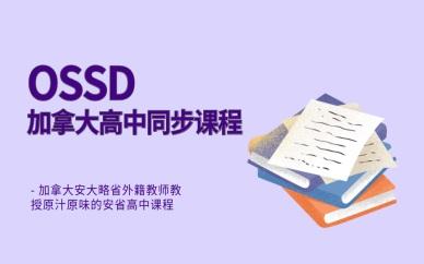 沈阳皇姑OSSD培训课程