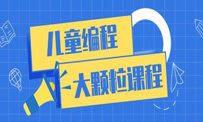 郑州中原区大颗粒电子积木课程班